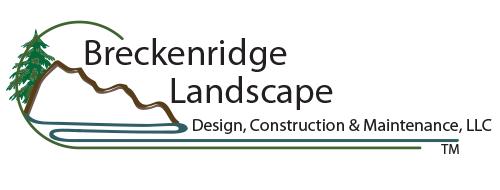 Breckenridge Landscape